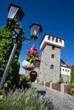 Castle with vineyard Stock Photos