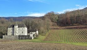 Castle in the vineyard Stock Images