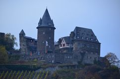 Castle with Vineyard on Rhine River royalty free stock photos