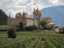 Castle and vineyards Stock Photography