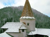 Castle of Vlad Tepes Dracula. Stock Photography