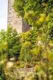 Castle of Waldenburg, Germany Stock Images