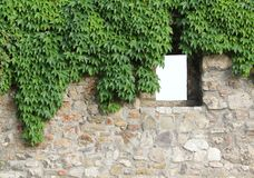 Castle wall Royalty Free Stock Images