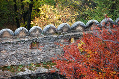 Castle Wall in Autumn Stock Photos