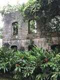 Castle Wall Garden. The remaining wall of an ancient castle is used to display a lush garden Stock Photos