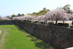 Castle wall of Osaka city, Japan Royalty Free Stock Images