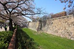 Castle wall of Osaka city, Japan Royalty Free Stock Image