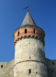 Castle wall and tower. Medieval Ukrainian fortification Stock Images
