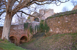 Castle Wall and Tree in Winter. Dramatic looking outside wall and tower, and an old tree in winter, at Carisbrooke Castle on the Isle of Wight Royalty Free Stock Photos