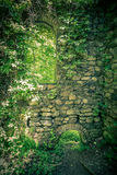 Castle wall in woods Stock Photos