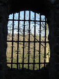 Castle window in a German ruin Royalty Free Stock Images