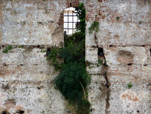 Castle window Stock Photography