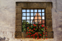 Castle window, Ptuj, Slovenia. View through an old castle window with red petunias onto the castle tower, Ptuj, Slovenia Royalty Free Stock Photography