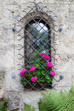 Castle window and vivid pink flowers Royalty Free Stock Photography