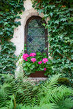 Castle window and vivid pink flowers Royalty Free Stock Photo