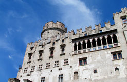 Castle with windows and tower Royalty Free Stock Image