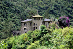 Castle in Yungas, Bolivia Royalty Free Stock Images
