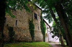 Castle Zvikov Royalty Free Stock Photos