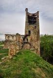 Castle Zviretice Stock Images