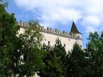 Castle Zvolen stock image