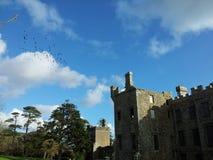 Castlefreke ptaków chmur zachodu korek Obrazy Stock