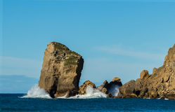 Castlepoint Piller Rock. This big pillar rock is on the entrance of Castlepoint Bay, New Zealand Royalty Free Stock Images