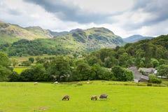 从Castlerigg霍尔凯西克湖区Cumbria的看法Derwent水和Catbells的 免版税库存照片