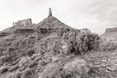 Castleton Tower- und Wacholderbusch-Baum Schwarzweiss stockfoto