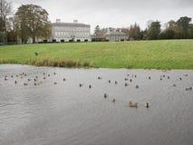 Castletownlandgoed, Celbridge, Kildare, Ierland Stock Afbeelding