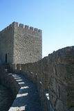 CastleWall Imagens de Stock Royalty Free