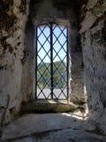 Castleward-Blick heraus Stockfotografie