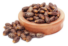 Castor beans in a wooden bowl. Over white background royalty free stock photo