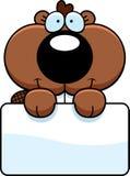 Castor Kit Sign dos desenhos animados Imagens de Stock