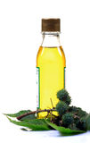 Castor oil Royalty Free Stock Photos