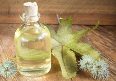 Castor oil bottle with castor fruits, seeds and leaf - Ricinus communis. Castor oil as a purgative and as a laxative stock images