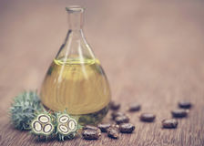 Castor oil with dry and green beans Stock Image
