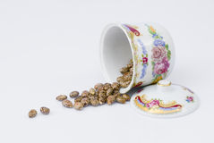 Castor seeds with porcelain container Stock Images