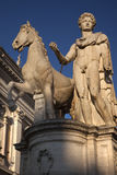 Castor Statue Defender of Rome Italy Stock Image