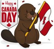 Castoro che tiene una bandiera sotto la doccia dei coriandoli per il giorno del Canada, illustrazione di vettore Immagini Stock