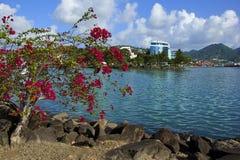Castries Saint Lucia som är karibisk Arkivfoton