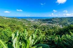 Castries, Santa Lucía - playa tropical de la costa en la isla caribeña de St Lucia Es un destino del paraíso con una arena blanca imagenes de archivo