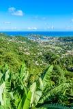 Castries, Santa Luc?a - playa tropical de la costa en la isla caribe?a de St Lucia Es un destino del para?so con una arena blanca foto de archivo