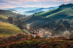 Castrocaro Terme e Terra del Sole, forli-Cesena, Emilia Romagna, Italië: landschap bij zonsopgang van de heuvels met mist in de v royalty-vrije stock foto's