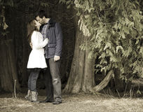 Casual couple Stock Images