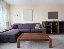 Casual living room Stock Image