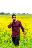 Casual man outdoors on a field Royalty Free Stock Photos