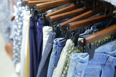 Casual pants on hangers Royalty Free Stock Image