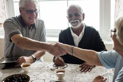 Free Casual Seniors Shaking Hands Together Stock Images - 108017884
