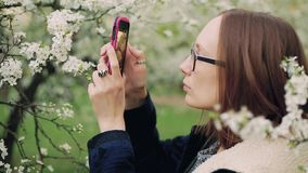 Casual woman taking photos of blossom spring tree flowers on a smartphone. Casual woman in glasses taking photos of blossom spring tree flowers on a smartphone stock video footage