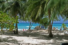 Casuarina beach. The beach at the casuarina, Barbados royalty free stock image